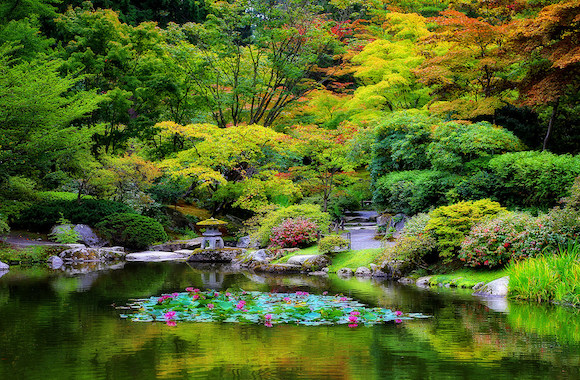 Seattle Japanese Garden: Need Inspiration For Your Landscape Project?