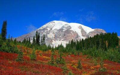 Fall Foliage Trips in Washington State