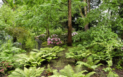 Garden Tours and Parties in Seattle This Summer 2018